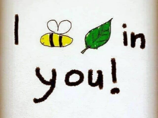 Помогаем пчелам! Растения на английском, которые нравятся русским и английским пчелам