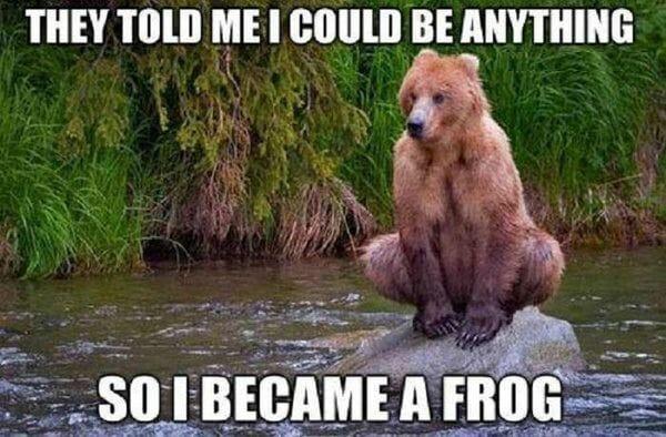 could английские глаголы, изучение с медведем