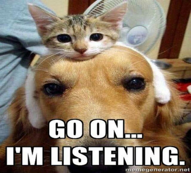 angielski do słuchania