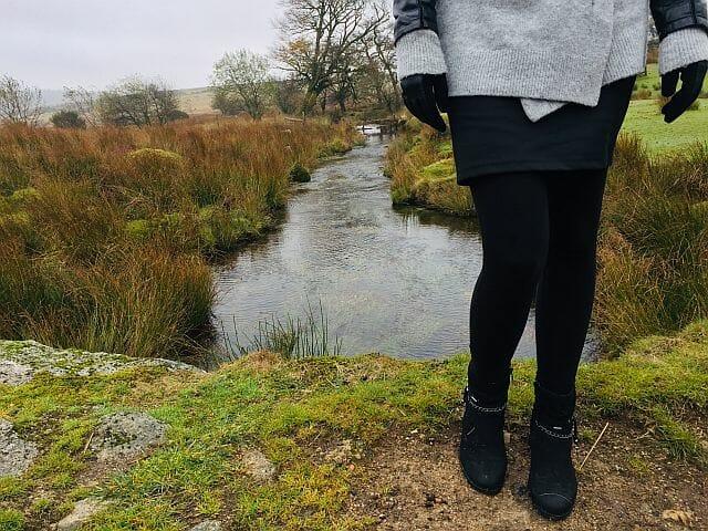 angielski park narodowy Dartmoor