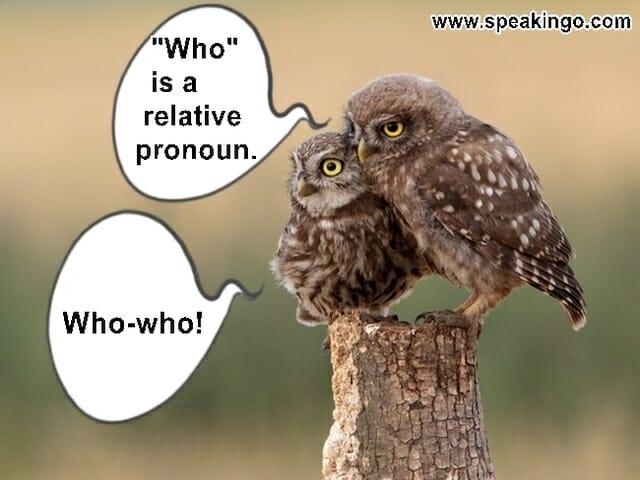 relative pronouns, zaimki względne, who