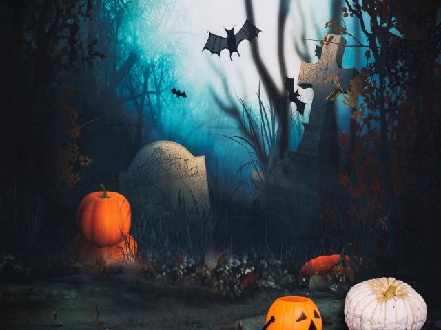 Historia Halloween, listening, National Geographic