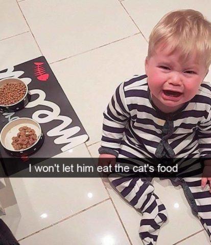 karma dla kotów, Płaczące dzieci w śmiesznych memach po angielsku