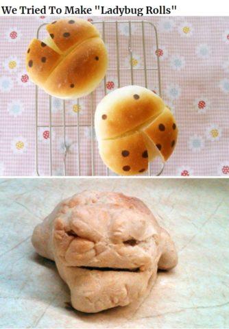gotowanie po angielsku w memach do nauki, ladybug, biedronka