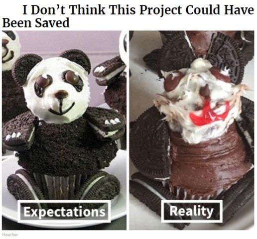 gotowanie po angielsku w memach do nauki, panda