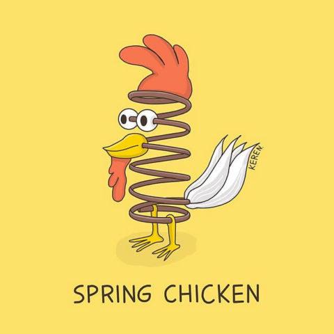 populární anglické idiomy v obrázcích spring chicken