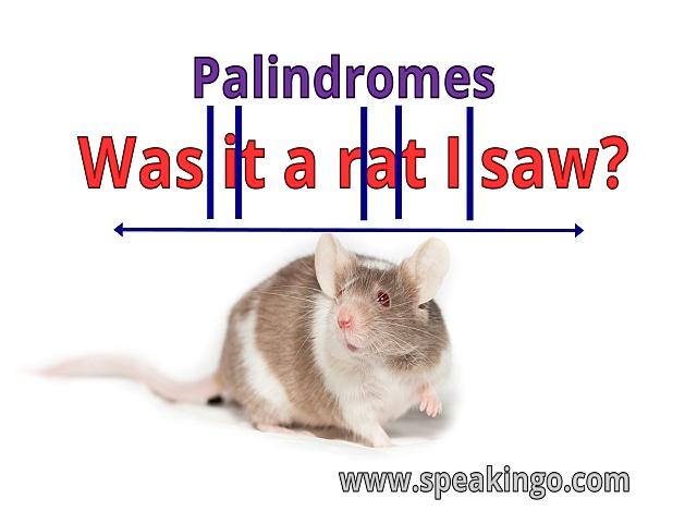 Palindromy, Lustrzane słówka, zdania, po angielsku, palindromes
